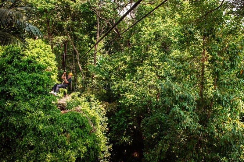 邮编线的人在热带林冠层在普吉岛,泰国 库存图片