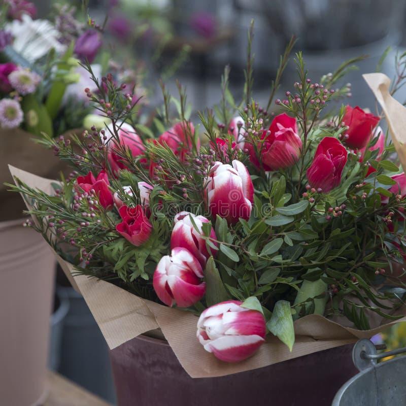 郁金香、银莲花属和玉树婚姻的花束  库存图片