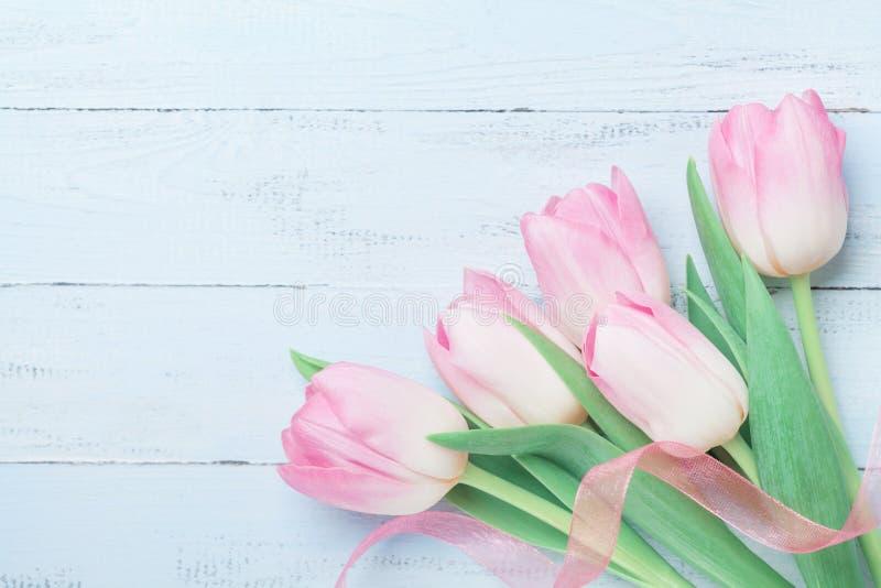 郁金香为妇女或母亲节开花在蓝色桌上的装饰的丝带 美好的看板卡春天 顶视图 免版税库存照片