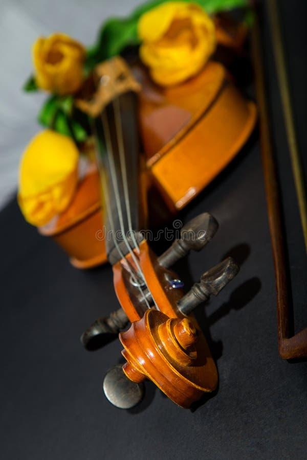 郁金香和小提琴 图库摄影