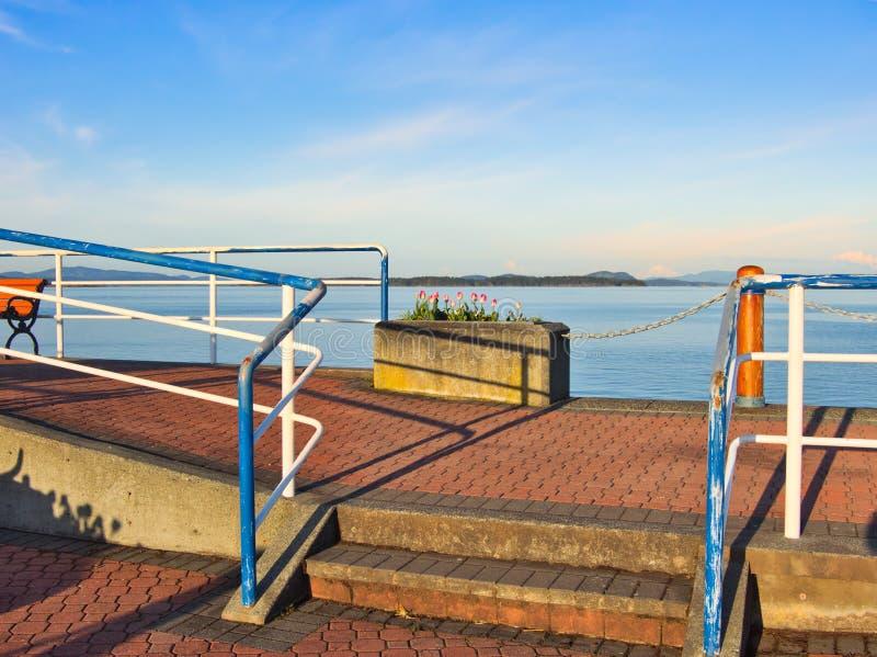 郁金香在悉尼,温哥华岛,不列颠哥伦比亚省装饰海边步行 免版税库存图片