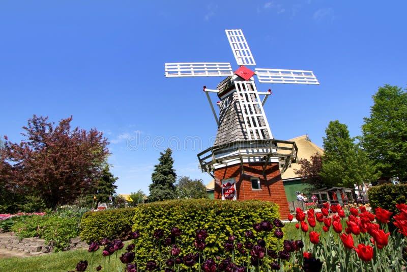 郁金香庭院在荷兰,密执安 图库摄影