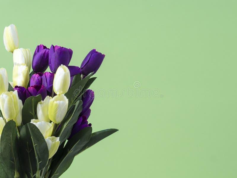 郁金香开花在绿色背景的花束 免版税库存照片