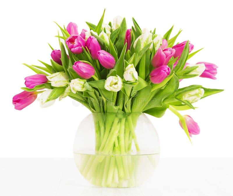 郁金香开花在花瓶,白色背景的花束 图库摄影