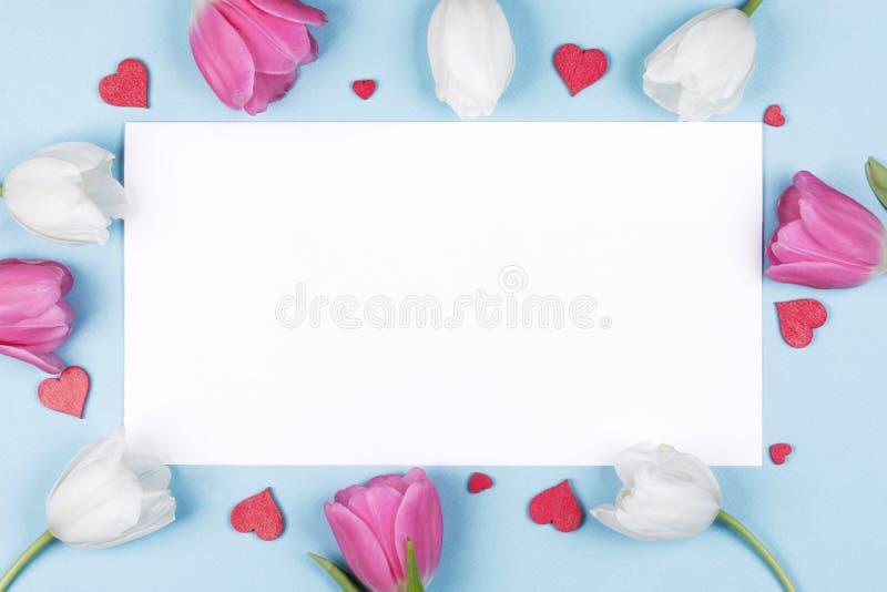 郁金香心脏和卡片 免版税库存图片