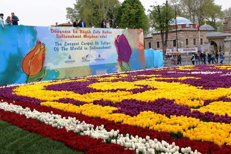 郁金香最大的地毯世界在Sultanahmet,伊斯坦布尔 免版税图库摄影