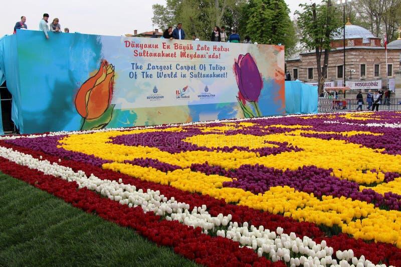 郁金香最大的地毯世界在Sultanahmet,伊斯坦布尔 库存图片