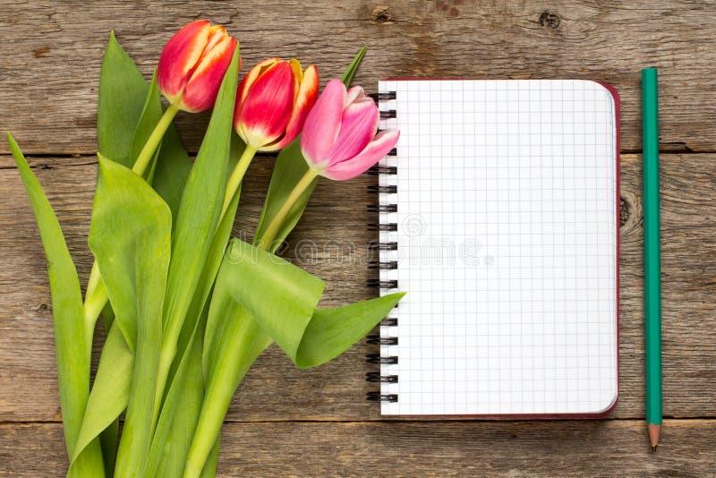 郁金香花束和空白的笔记本 库存图片