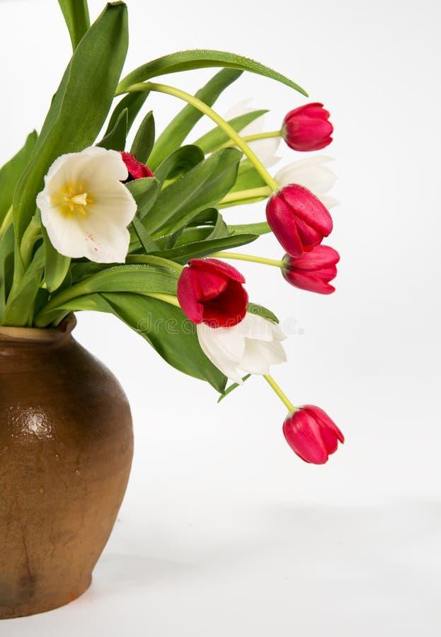郁金香花束在一个老陶瓷水罐的 免版税库存照片