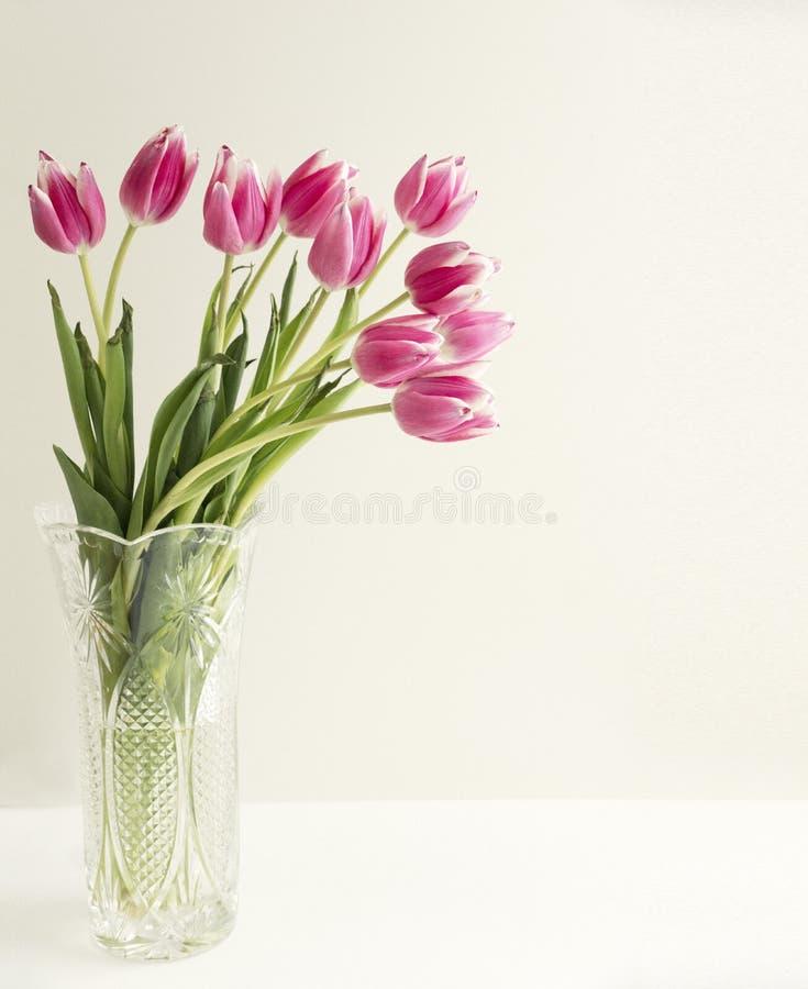 郁金香花花束在清楚的花瓶的 免版税库存图片