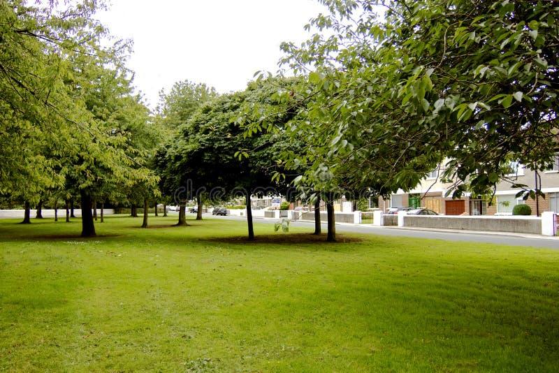 郊区绿色的空间 免版税图库摄影