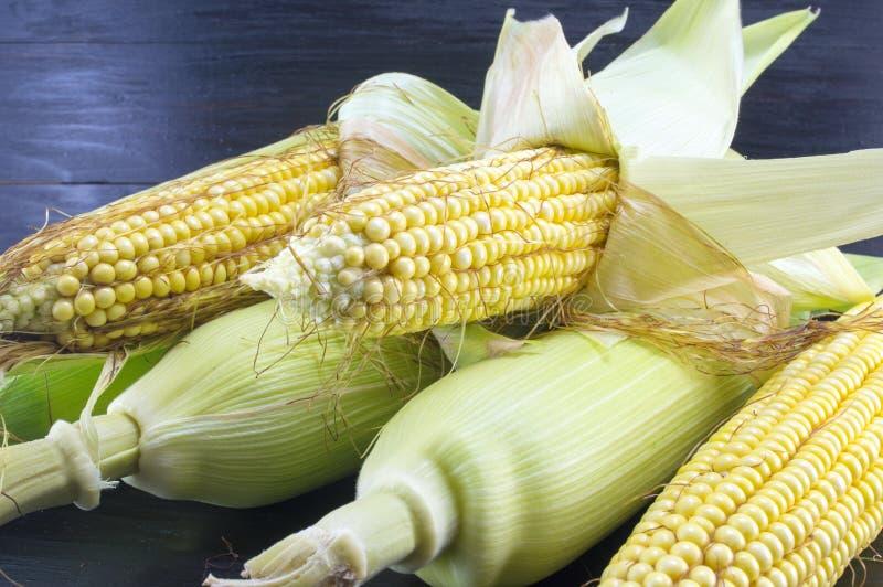 部分地显露的新鲜的黄色玉米 免版税库存照片