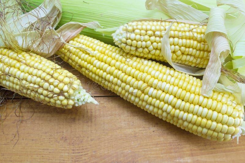 部分地显露的新鲜的黄色玉米 库存图片