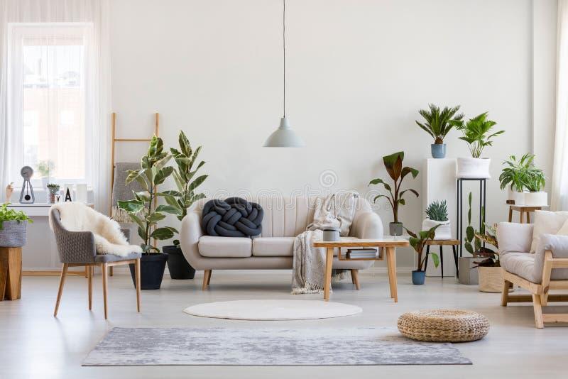 都市丛林,在时尚的客厅内,白色沙发,黑结枕头和木制家具,在空墙上复制空间 图库摄影
