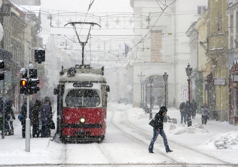 都市交通在冬天 降雪在匈牙利 米什科尔茨市15 热性 2010年 免版税库存图片