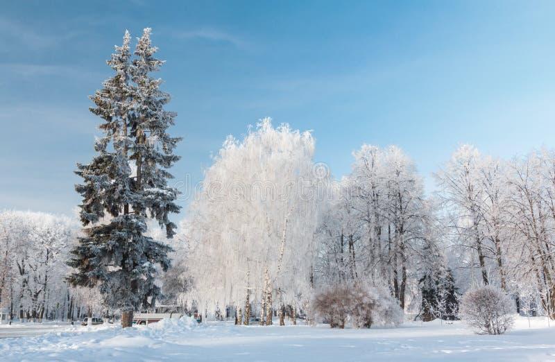 都市冬天风景。雅罗斯拉夫尔市,俄罗斯 库存图片