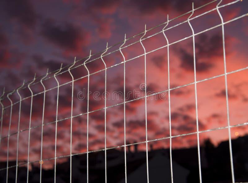 都市剪影和天空与卷积云和篱芭 免版税库存照片
