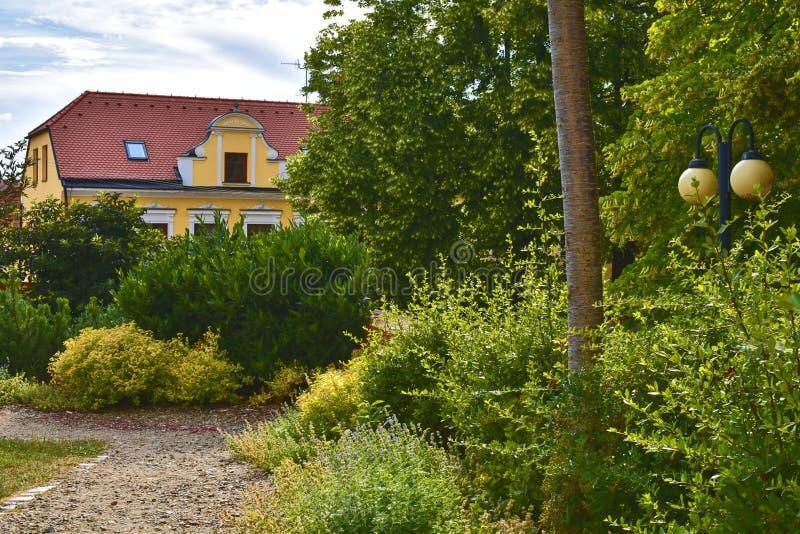 都市历史背景 都市浪漫公园 颜色箭深度域浅软件 花和大厦在背景 选择聚焦 免版税库存图片
