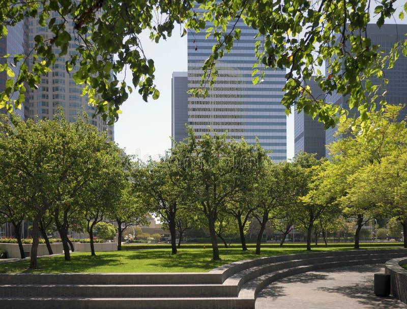 都市的公园 免版税库存照片