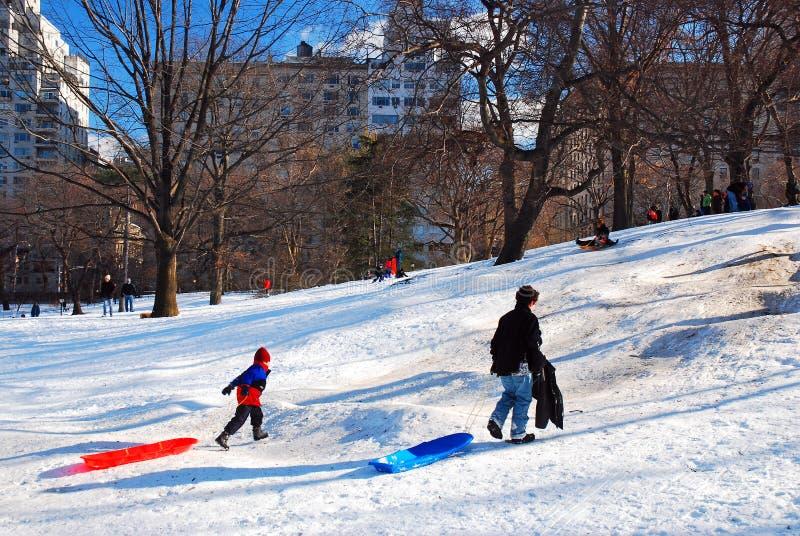 都市雪天在中央公园 图库摄影
