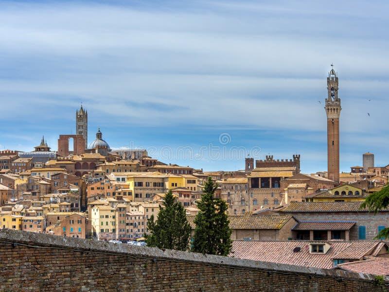 都市风景,锡耶纳,托斯卡纳,意大利,欧洲 免版税图库摄影