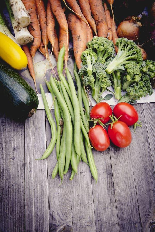 都市从事园艺的菜收获庄稼 免版税库存图片