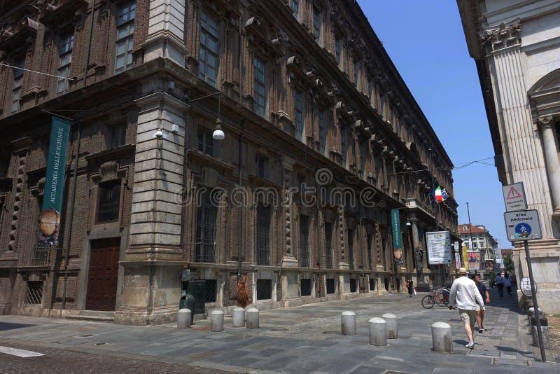 都灵埃及人博物馆 免版税图库摄影