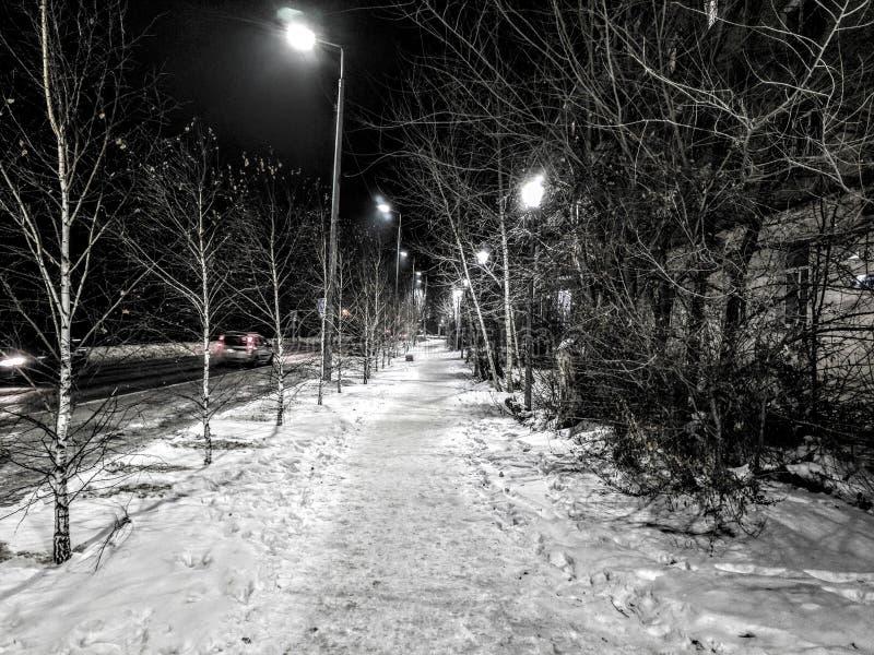 鄂木斯克市,苏联公园 库存图片