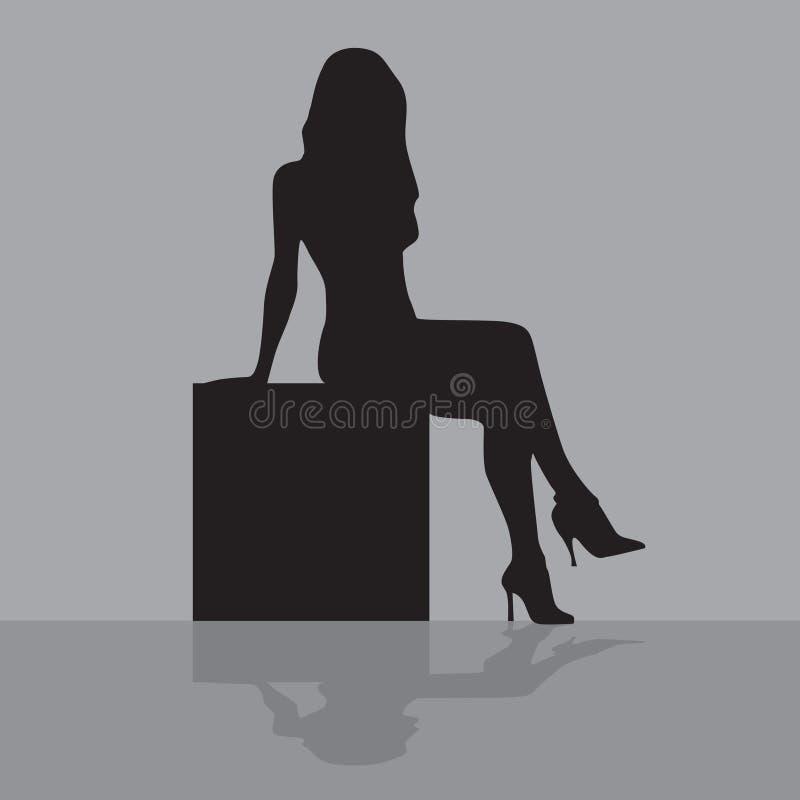 配件箱坐的妇女 库存例证