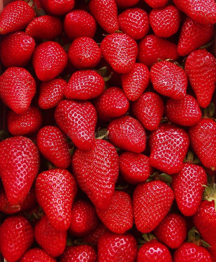 配件箱草莓 免版税图库摄影