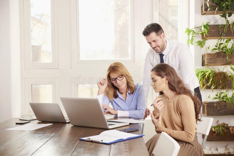 配合在办公室 小组一起研究膝上型计算机的商人在办公室 免版税图库摄影