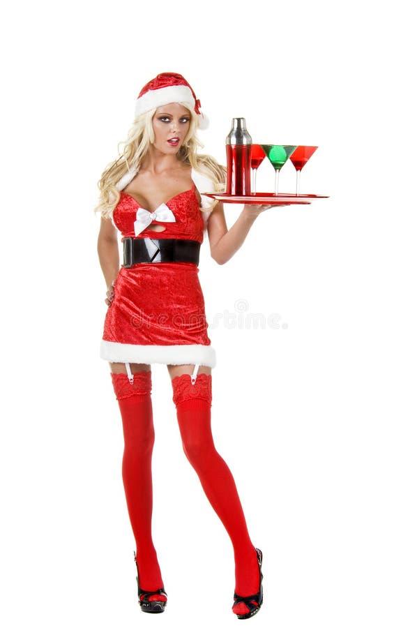 酒吧招待圣诞节 库存图片