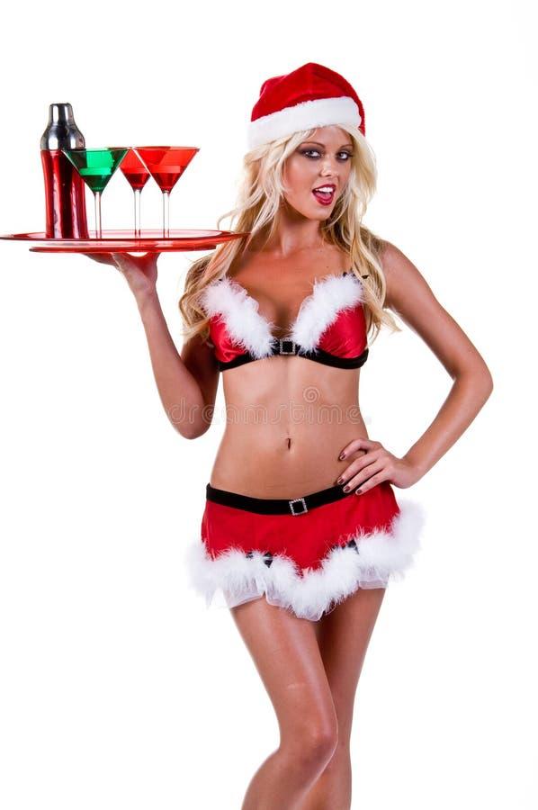 酒吧招待圣诞节 库存照片