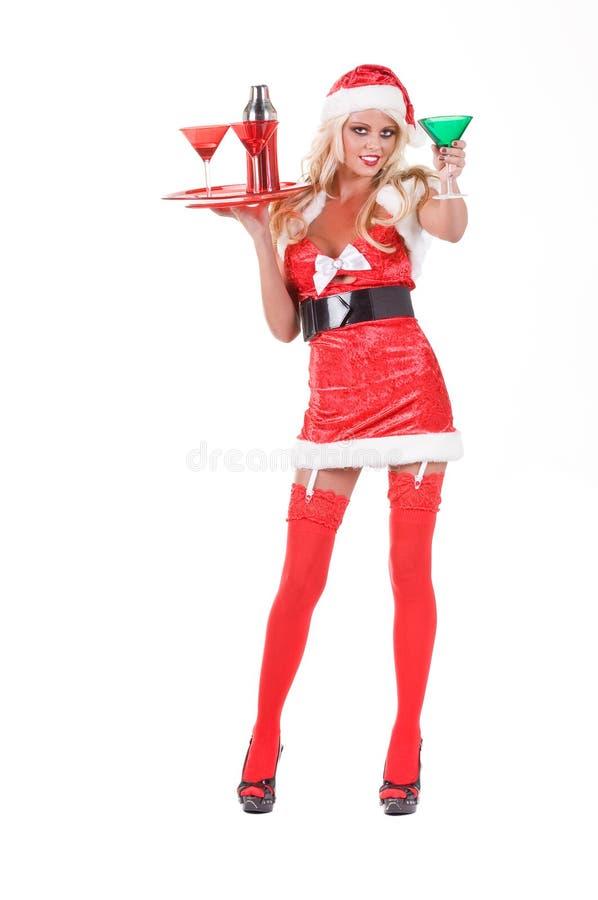 酒吧招待欢呼圣诞节 图库摄影