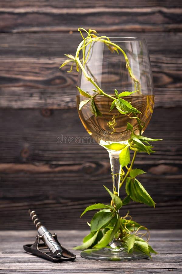 酒和拔塞螺旋Gass  免版税图库摄影
