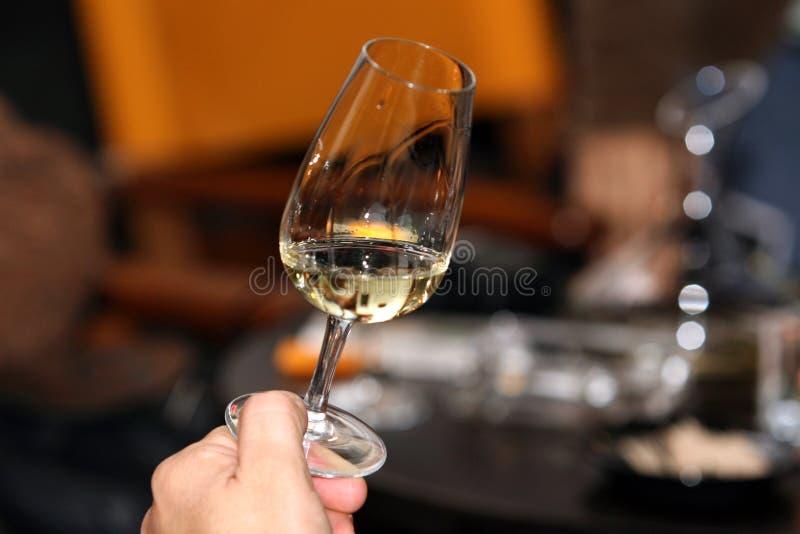酒抽样人员 免版税库存图片