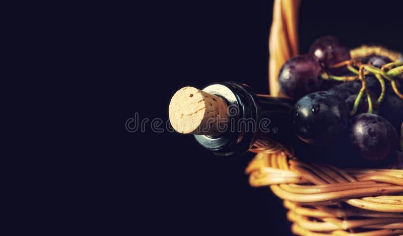 酒瓶和深蓝葡萄 库存照片