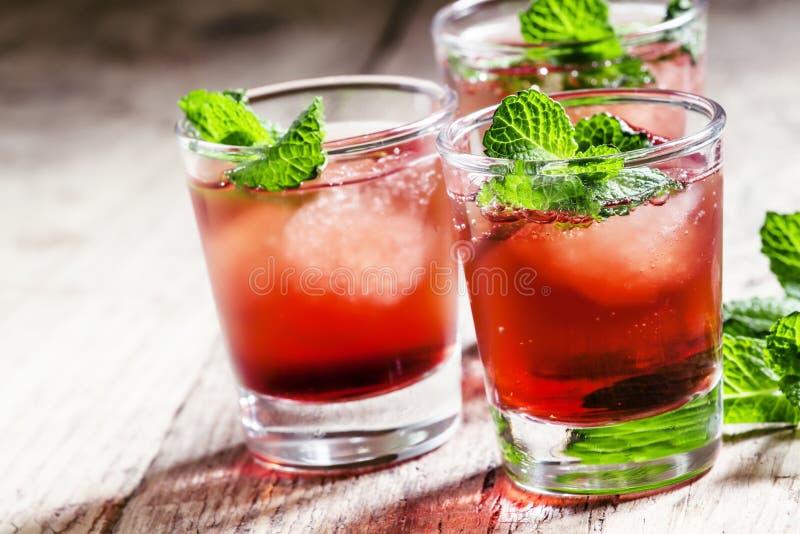 酒精鸡尾酒用白色兰姆酒巴卡迪,堪蓓莉开胃酒,苦艾酒, mi 库存图片