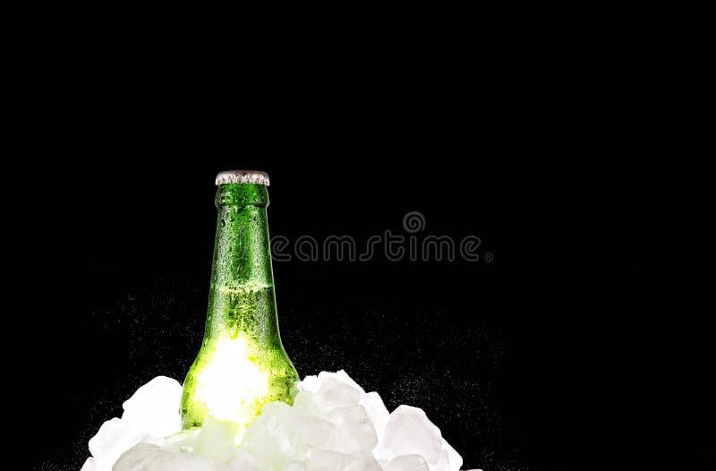 酒精,啤酒,瓶,寒冷,冰,茶点,拷贝空间 免版税库存图片