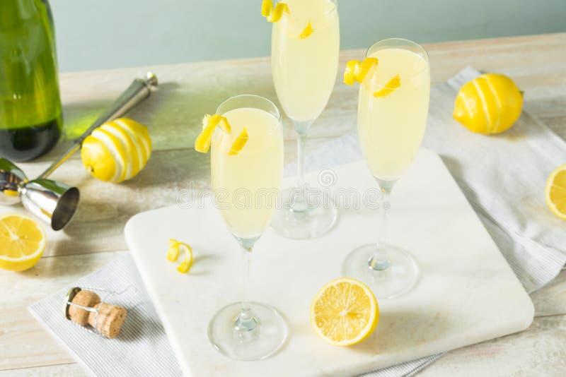 酒醉的起泡的柠檬法国人75鸡尾酒 图库摄影