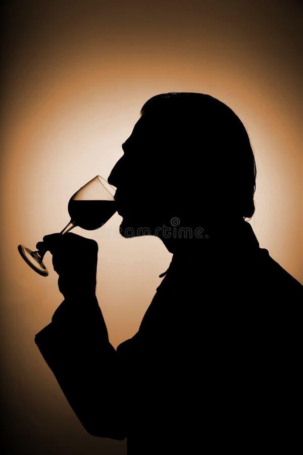 酒 免版税图库摄影