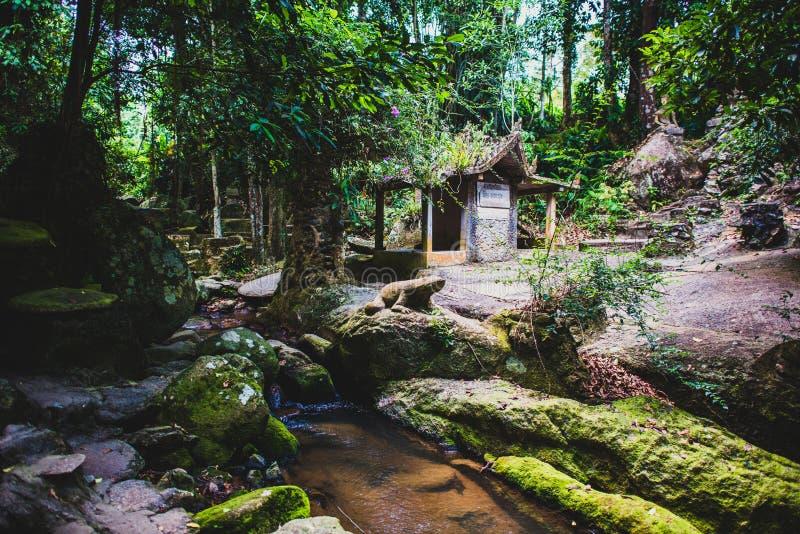 酸值的苏梅岛不可思议的庭院 库存照片