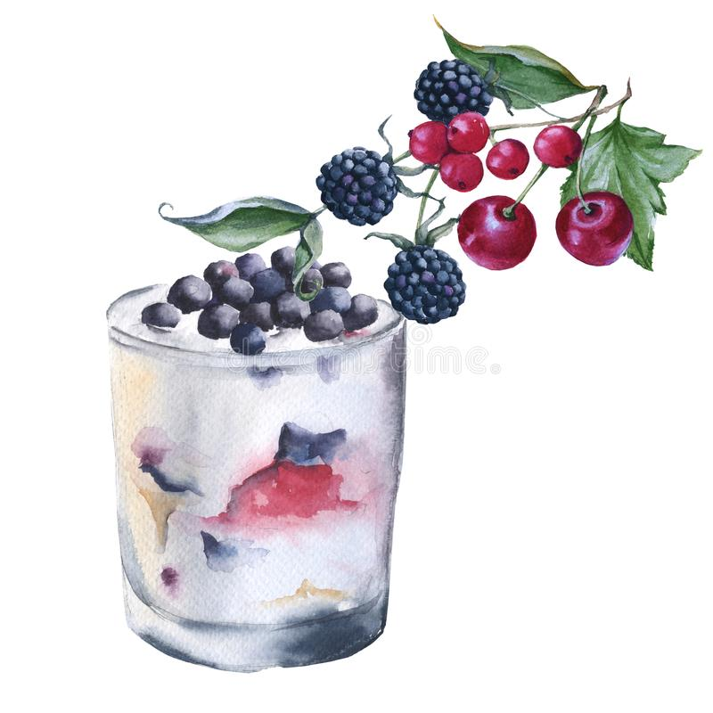 酸奶用在玻璃的莓果 背景查出的白色 库存例证
