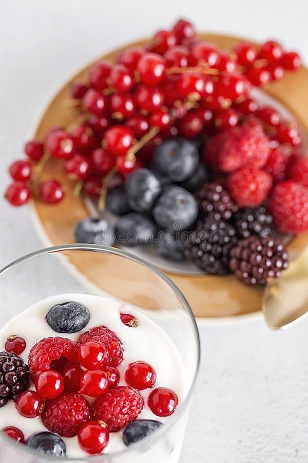 酸奶用莓果、蔓越桔和莓 免版税库存图片