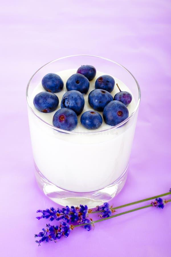 酸奶用越桔 免版税库存图片