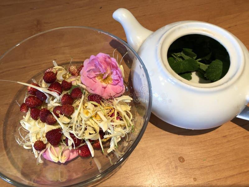酿造从新鲜的茉莉花忍冬属植物玫瑰和香蜂草的花茶 图库摄影