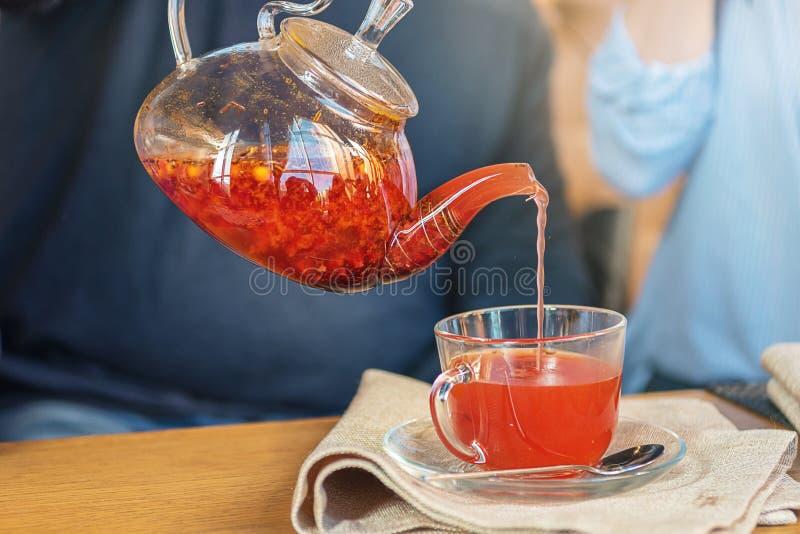 酿造茶、一杯红色果子新近地酿造的果子茶和蜂蜜的过程 热的茶从水壶倾吐入杯 免版税库存图片