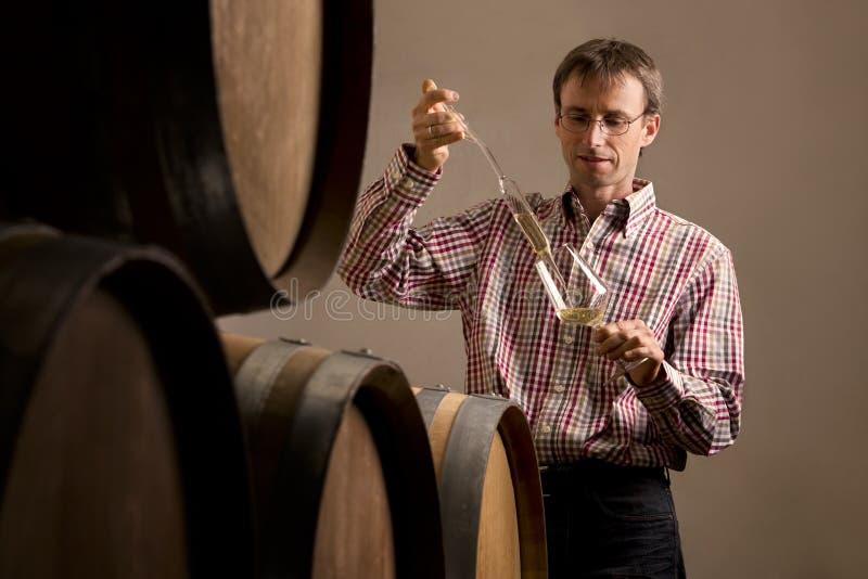 酿酒商在做酒测试的地窖里。 免版税库存图片