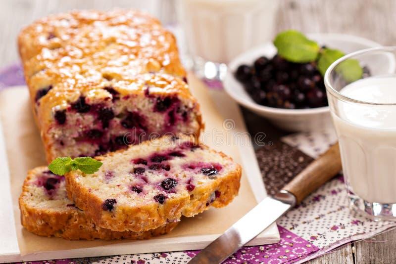 黑醋栗大面包蛋糕 库存图片