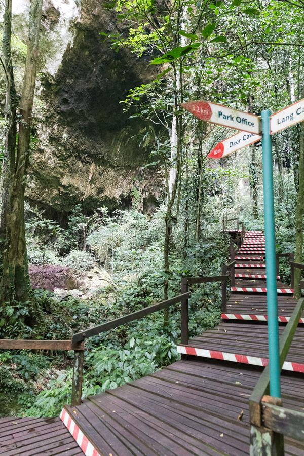 醒来在足迹上的游人入Mulu国家公园 免版税库存图片